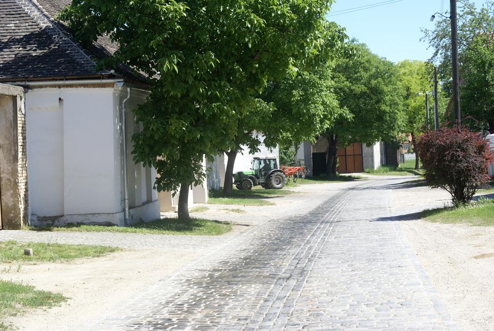 Eschenhof-Holzer-02