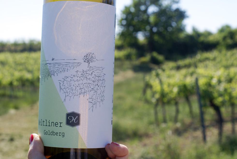 Eschenhof-Holzer-05
